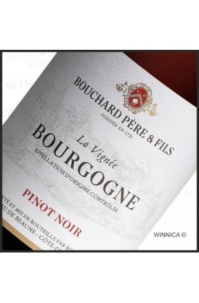 "Bourgogne ""La Vignee"" - Pinot Noir"
